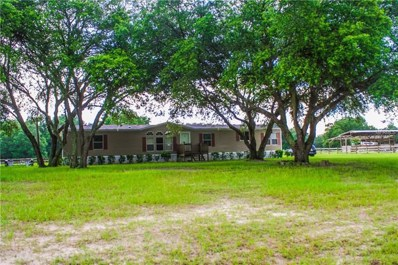 35236 Train Pass, Webster, FL 33597 - MLS#: T3116726
