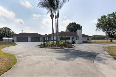6709 W Knights Griffin Road, Plant City, FL 33565 - MLS#: T3116807