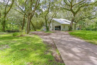 2215 Fritzke Road, Dover, FL 33527 - MLS#: T3116888