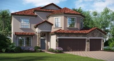 11923 Cinnamon Fern Drive, Riverview, FL 33579 - MLS#: T3116921