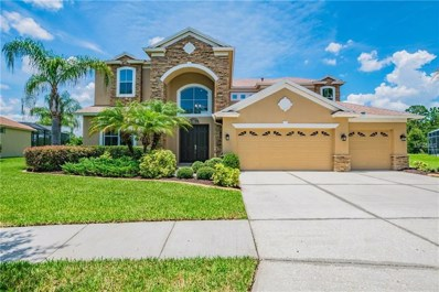 20653 Longleaf Pine Avenue, Tampa, FL 33647 - MLS#: T3117088