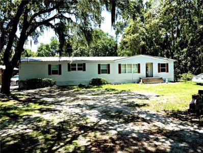 10040 Wilderness Creek Run, Lithia, FL 33547 - MLS#: T3117172