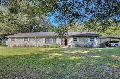 33219 Mandrake Road, Wesley Chapel, FL 33543 - MLS#: T3117215