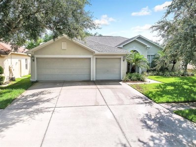 10910 Wildcat Drive, Riverview, FL 33579 - MLS#: T3117296