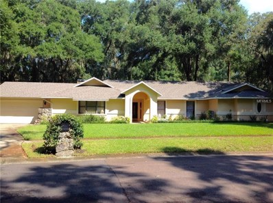 3903 Butternut Court, Brandon, FL 33511 - #: T3117492
