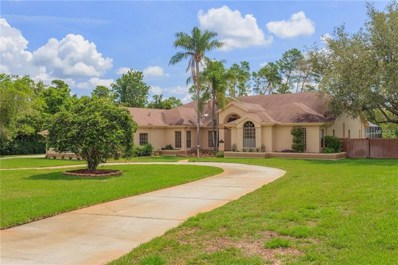 8906 Skymaster Drive, New Port Richey, FL 34654 - MLS#: T3117597