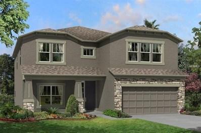 10714 Pleasant Knoll Drive, Tampa, FL 33647 - MLS#: T3117722