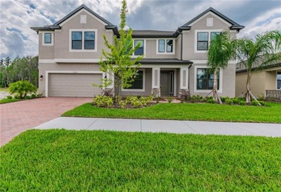 19276 Briarbrook Drive, Tampa, FL 33647 - MLS#: T3117725
