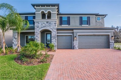19218 Briarbrook Drive, Tampa, FL 33647 - #: T3117731