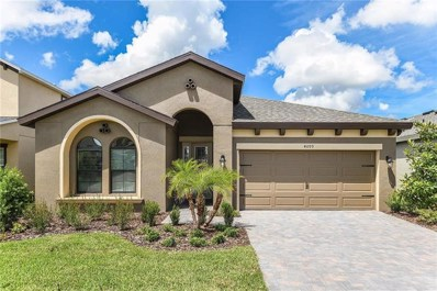 4099 Welling Terrace, Land O Lakes, FL 34638 - MLS#: T3118213
