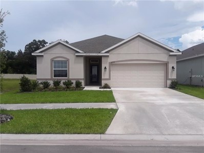 16722 Mooner Plank Circle, Wimauma, FL 33598 - MLS#: T3118453