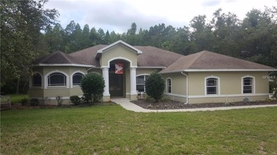10149 Miracle Lane, New Port Richey, FL 34654 - MLS#: T3118489