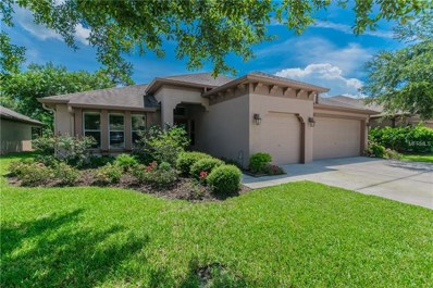 4811 Diamonds Palm Loop, Wesley Chapel, FL 33543 - #: T3118695