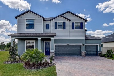 2905 Hilliard Drive, Wesley Chapel, FL 33543 - MLS#: T3118841