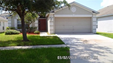 12423 Cedarfield Drive, Riverview, FL 33579 - MLS#: T3119126