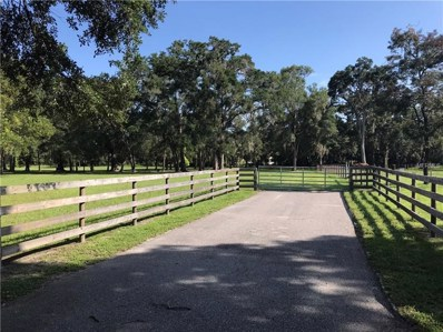 Crocodile Lane, San Antonio, FL 33576 - MLS#: T3119321