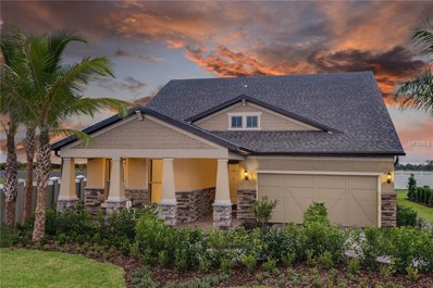 7905 Olive Brook Drive, Wesley Chapel, FL 33545 - MLS#: T3119522