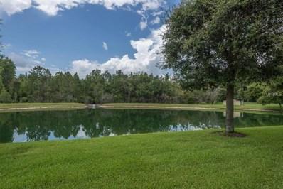 9532 Charlesberg Drive, Tampa, FL 33635 - MLS#: T3119585