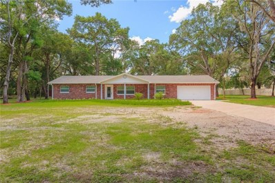 11029 Clay Pit Road, Tampa, FL 33610 - MLS#: T3119625