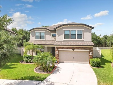 11731 Albatross Lane, Riverview, FL 33569 - MLS#: T3119669