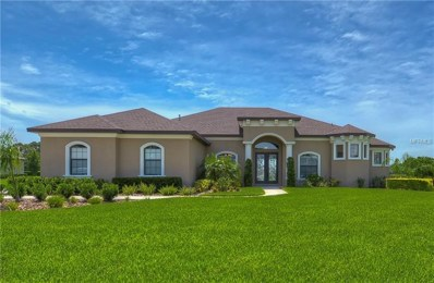 10915 Brice Tree Court, Lithia, FL 33547 - MLS#: T3119697