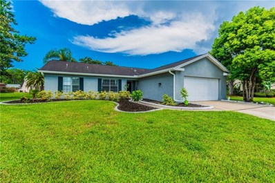 9824 Zaharias Court, New Port Richey, FL 34655 - MLS#: T3119791