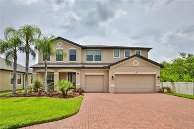 13217 Sunset Shore Circle, Riverview, FL 33579 - MLS#: T3119811