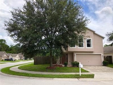 30249 Birdhouse Drive, Wesley Chapel, FL 33545 - MLS#: T3119853