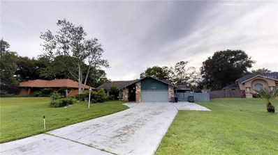 22451 Southshore Drive, Land O Lakes, FL 34639 - MLS#: T3120336