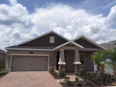10229 Lovegrass Lane, Orlando, FL 32832 - MLS#: T3120548