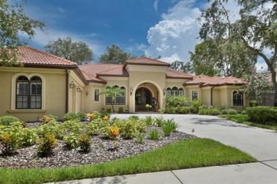 16401 Dunlindale Drive, Lithia, FL 33547 - MLS#: T3120593