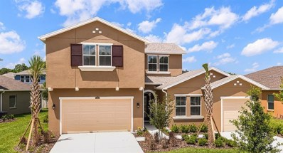 1705 Whitewillow Drive, Wesley Chapel, FL 33543 - MLS#: T3120781