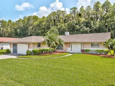 503 Lakeview Drive, Oldsmar, FL 34677 - MLS#: T3121113