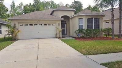 15849 Pond Rush Court, Land O Lakes, FL 34638 - MLS#: T3121151