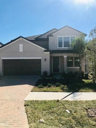16307 Hyde Manor Drive, Tampa, FL 33647 - #: T3121213