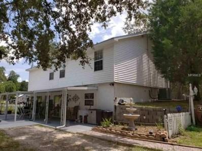 8217 Hatteras Drive, Webster, FL 33597 - MLS#: T3121481