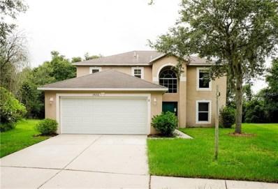 19216 Wood Sage Drive, Tampa, FL 33647 - MLS#: T3121584