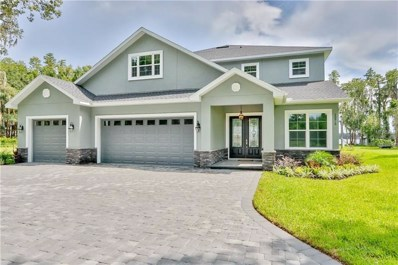 20910 Ragan Lane, Land O Lakes, FL 34638 - MLS#: T3121836