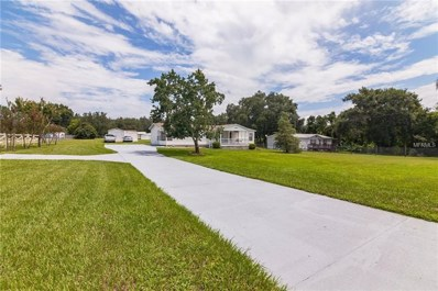 1020 Commonwealth Avenue SW, Polk City, FL 33868 - MLS#: T3122261