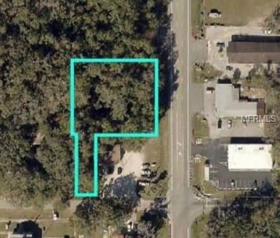 Manecke Road, Brooksville, FL 34601 - MLS#: T3122380