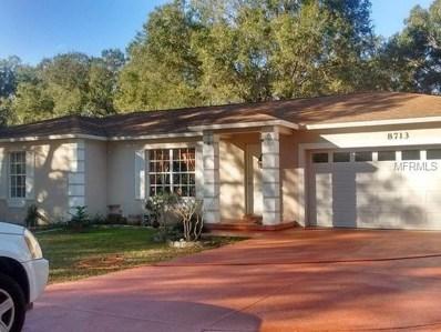 8713 S Meadowview Circle, Tampa, FL 33625 - MLS#: T3122875