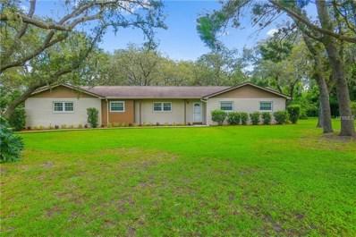 114 Wooddale Drive, Brandon, FL 33511 - MLS#: T3122923
