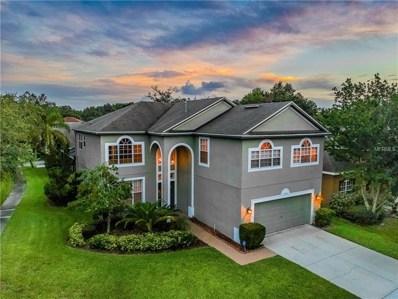 7302 Brightwater Oaks Drive, Tampa, FL 33625 - #: T3122987