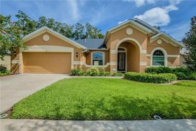 311 Parsons Woods Drive, Seffner, FL 33584 - MLS#: T3123158