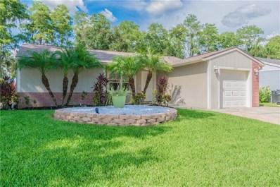 5711 Carrollwood Meadows Drive, Tampa, FL 33625 - MLS#: T3123188