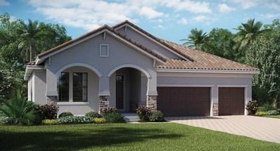 11909 Cinnamon Fern Drive, Riverview, FL 33579 - MLS#: T3123293