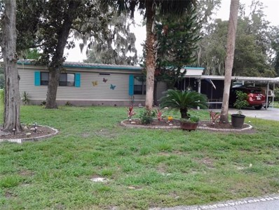 53 N Bobwhite Road, Wildwood, FL 34785 - MLS#: T3123397