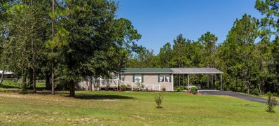 13703 Riada Way, Dade City, FL 33525 - MLS#: T3123439