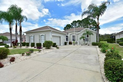 1129 Villeroy Drive, Sun City Center, FL 33573 - MLS#: T3123513