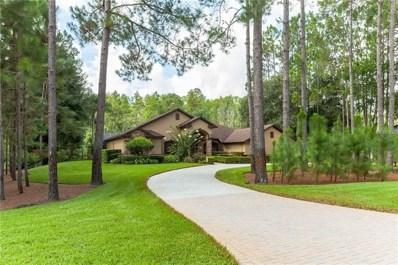 412 Pine Bluff Drive, Lutz, FL 33549 - MLS#: T3123541